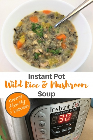 wild rice & mushroom soupv