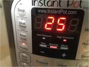 shredded chicken instant pot settings